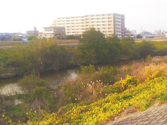 地元から発信!野並駅周辺の住みやすさを紹介地下鉄桜通線野並駅
