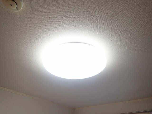 タウンハイツみずの 1階 照明