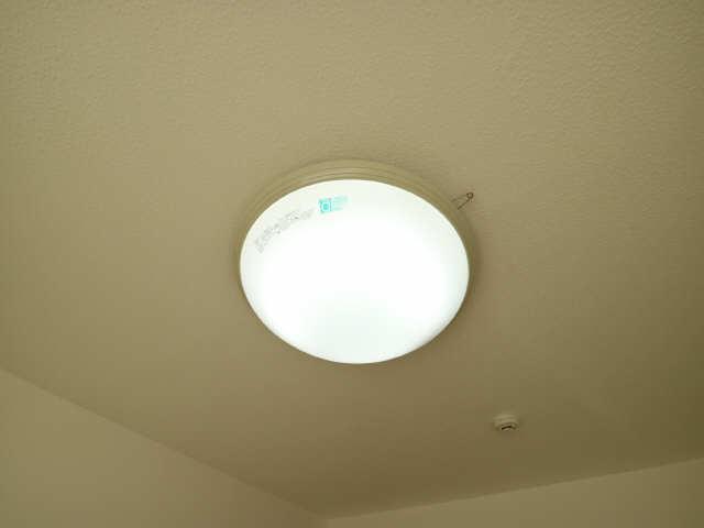 ベルデュール稲上 1階 照明器具