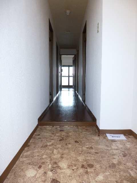ウィズネス 4階 玄関