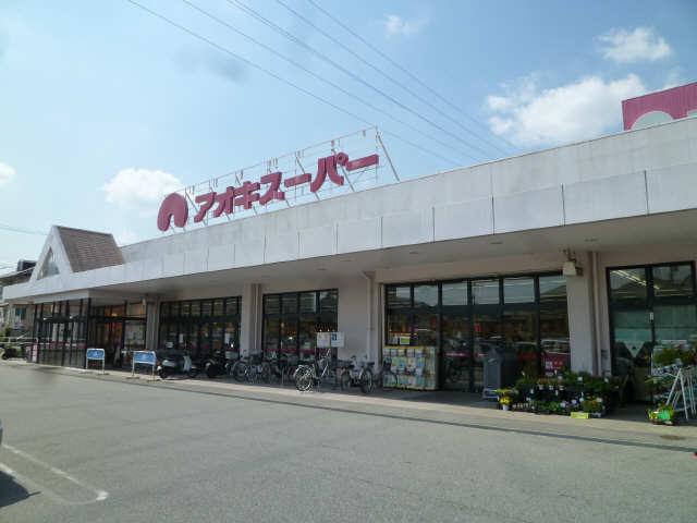 ハウス泉 アオキスーパー歩13分