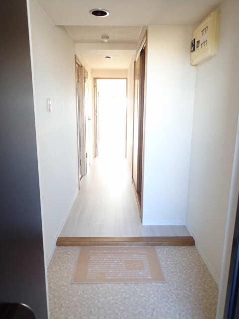 Avanti橘 5階 廊下