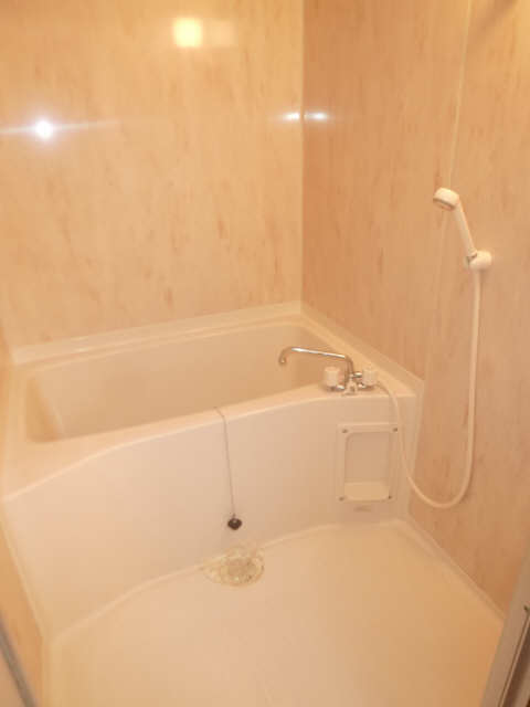 ハイム・リーラ 5階 浴室