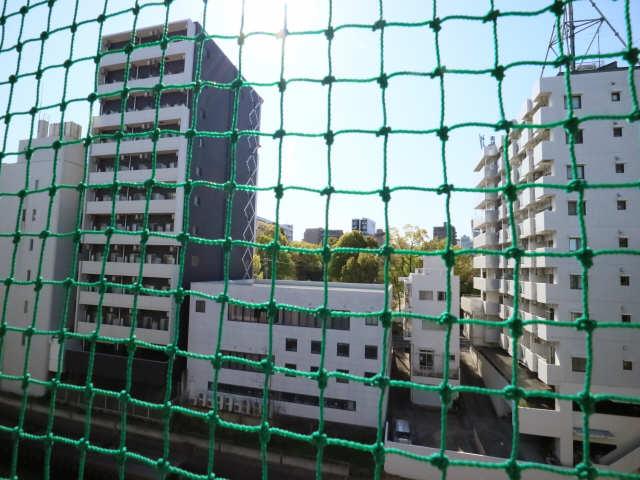 グリーンハイツ千代田 4階 眺望