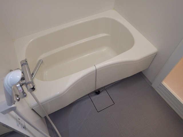 カーサ・フェリーチェ南棟 3階 浴室