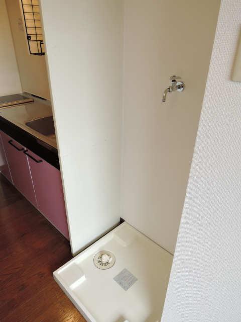 ヤングビレッジMAKI 3階 洗濯機置場