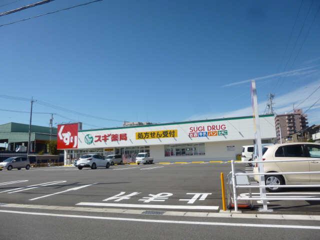 スギ薬局東栄町店