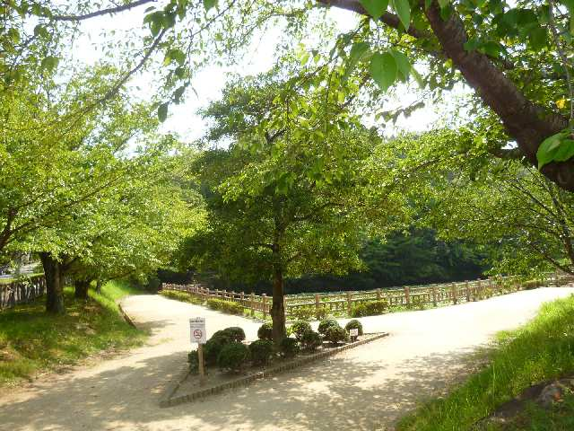 ベルハイツ竜美ヶ丘 1階 竜美ケ丘公園