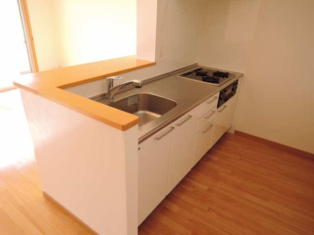 カーサヴェルデ 4階 キッチン