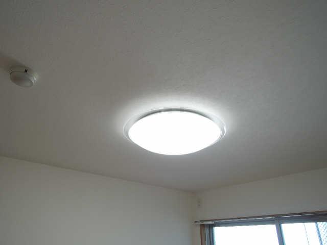 カーサヴェルデ 4階 照明器具(全室)