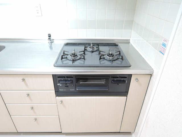 ウーリィパレス大森 3階 キッチン