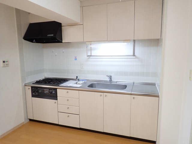 ウーリィパレス大森 5階 キッチン