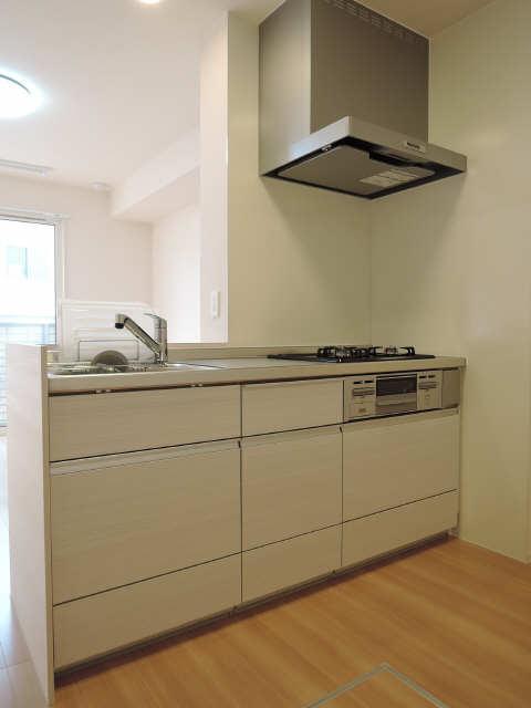 グランパルク東豊B 1階 キッチン