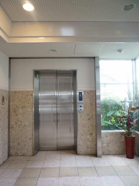Virtuous Life エレベーター