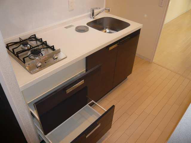 レジディア白壁 3Fニシ2キッチン