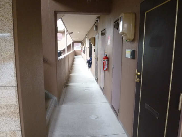 サウスヒルズA棟 2階 廊下