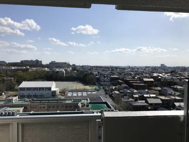 ウェルフォート幸川 13階 眺望
