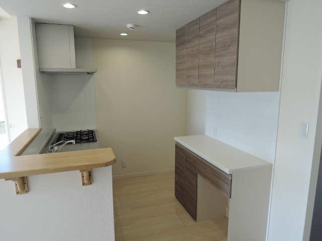 203号室キッチン3